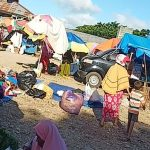 Terminal Laino Kabupaten Muna Dipenuhi Mobil dan Lapak Pedagang
